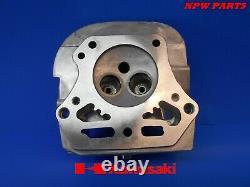 Kawasaki Fh541v, Fh541, Fh580v Twin Cylinder Head #2 11008-7020 Exmark John Deere